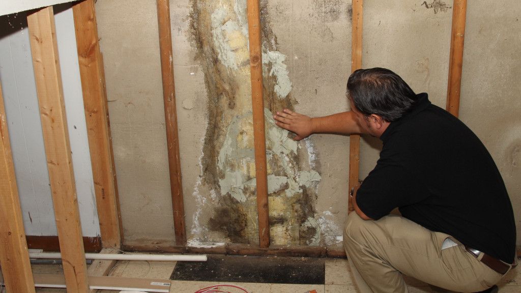 certified home inspector Chicago